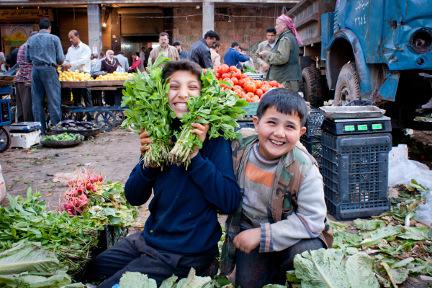 Aleppo / Syria