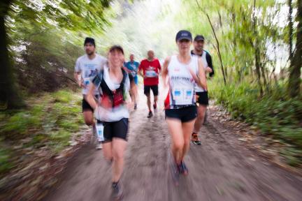 Forest Run 2014