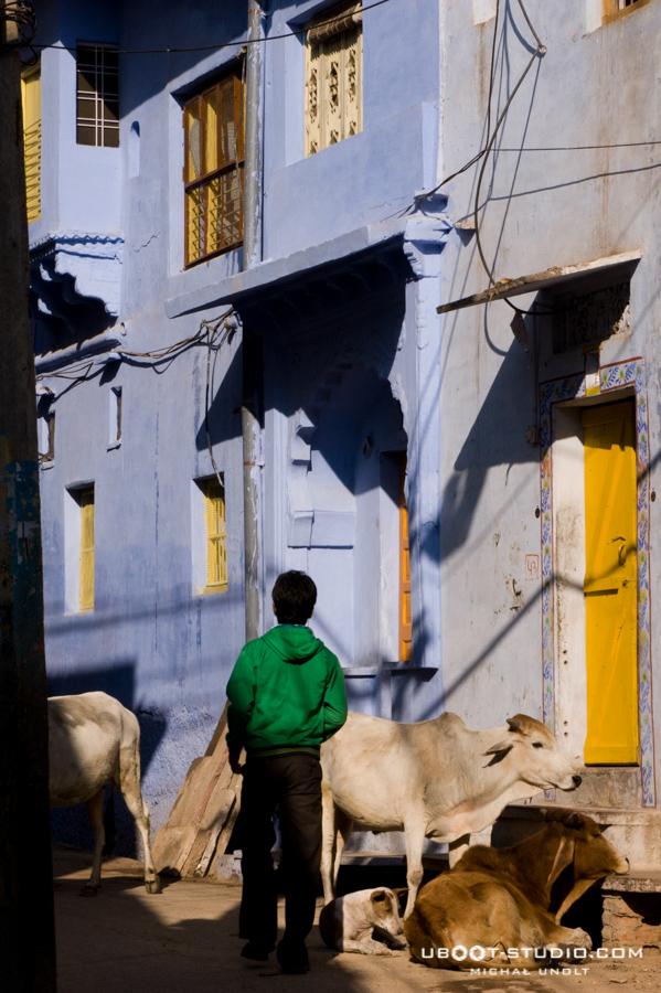 rajastan-india-street-5